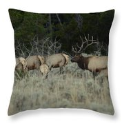 The Big One Throw Pillow
