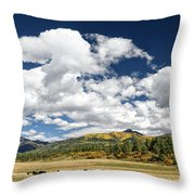 The Big Picture Throw Pillow