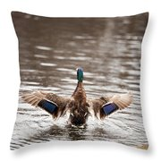 The Big Stretch Throw Pillow