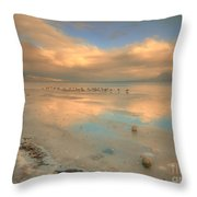The Birds And The Ice Throw Pillow