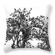 The Birds And The Tree Throw Pillow