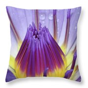 The Birth Of Beauty #2 Throw Pillow