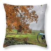 The Birth Of Freedom Throw Pillow