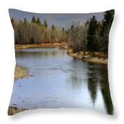 The Bitterroot River Montana Throw Pillow