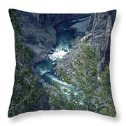The Black Canyon Of The Gunnison Throw Pillow