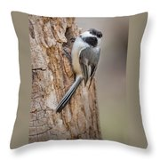 The Black Capped Chickadee Throw Pillow