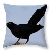 The Black Crow II Throw Pillow