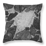 The Black Wall Throw Pillow