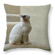 The Blond 5 Throw Pillow