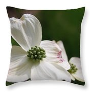 The Bloom Of Affection Throw Pillow
