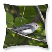 The Blue And The Grey Throw Pillow
