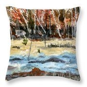 The Blue Bog Throw Pillow
