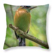The Blue Crown Throw Pillow
