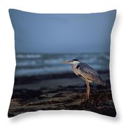 The Blue Heron Throw Pillow