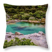 The Blue Pool Throw Pillow