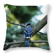 The Blues Song Throw Pillow