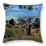 The Boabob Tree Throw Pillow