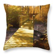 The Boardwalk And Bridge Throw Pillow