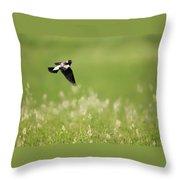 The Bobolink In Flight Throw Pillow