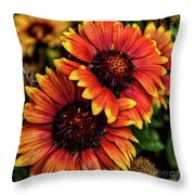 The Bold And Beautiful Pair Throw Pillow