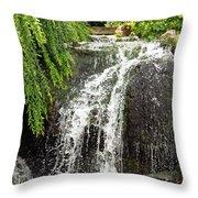 The Botanic Waterfall  Throw Pillow by Lori Frisch