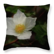 The Boulder Raspberry Flower Throw Pillow