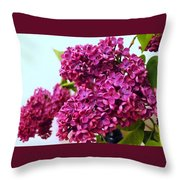 The Branch Of A Purple Lilac Throw Pillow