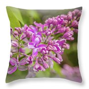 The Branch Of Lilac Throw Pillow