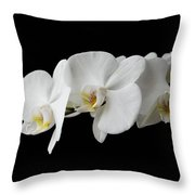 The Branch Of White Orchid On Black Background Throw Pillow