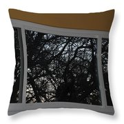 The Branch Window Throw Pillow