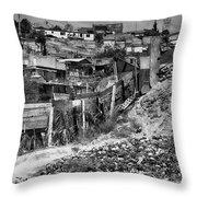 The Brickmakers Backyard Throw Pillow