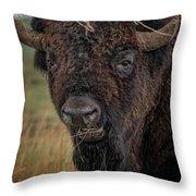 The Buffalo 2 Throw Pillow