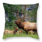 The Bugling Bull Elk Throw Pillow