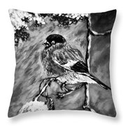 The Bullfinch Black And White Throw Pillow