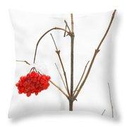 The Bunch Of Winter Rowan Throw Pillow