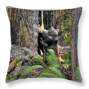 The Burly Bear Cub Close1 - Muir Woods National Monument - Marin County California Throw Pillow