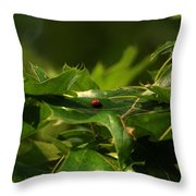 The Busy Lady Bugs Throw Pillow