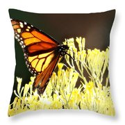The Butterfly 2 Throw Pillow