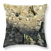 The Butterfly Dance Throw Pillow