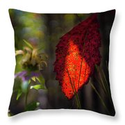 The Calling Of Fall Throw Pillow