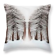 The Calm Of Winter In The Woods Throw Pillow