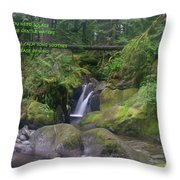 The Calm Waters  Throw Pillow