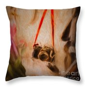 The Camera On The Wall Throw Pillow