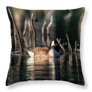 The Canada Goose Throw Pillow