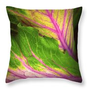The Caress Throw Pillow