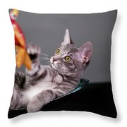 The Cat And The Fish Throw Pillow