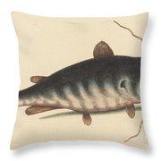 The Cat Fish (silurus Catus) Throw Pillow
