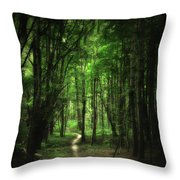 The Cathedral Arch Throw Pillow