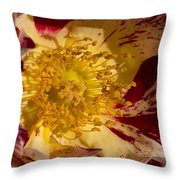 The Center Of A Rose Throw Pillow