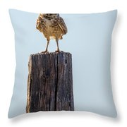 The Chairman Of The Board Throw Pillow